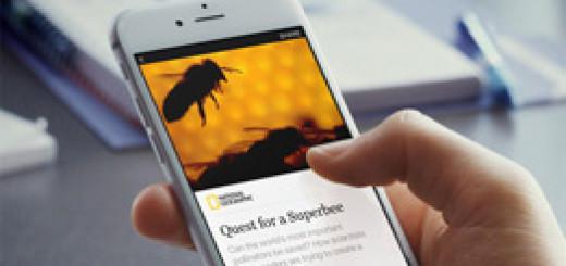 Facebook сделает «Мгновенные статьи» общедоступными